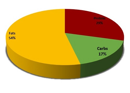 My week long diet experiment the paleo zone diet mace calculated out this hovered around 1900 calories a day which is right at my goal bodyweights bmr 180 lbs 1897 calories a little low ill admit malvernweather Gallery